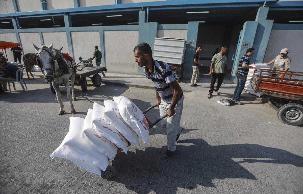 Người tị nạn Palestine nhận thực phẩm cứu trợ từ UNRWA tại trại tị nạn Jabalia ở Dải Gaza ngày 4/9/2018. (Ảnh: THX/TTXVN)