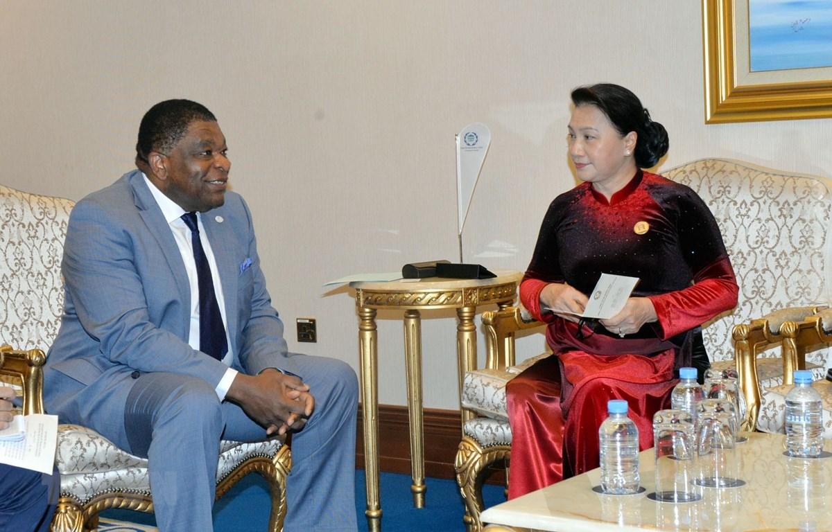 Chủ tịch Quốc hội Nguyễn Thị Kim Ngân tiếp Tổng Thư ký IPU Martin Chungong. (Ảnh: Trọng Đức/TTXVN)