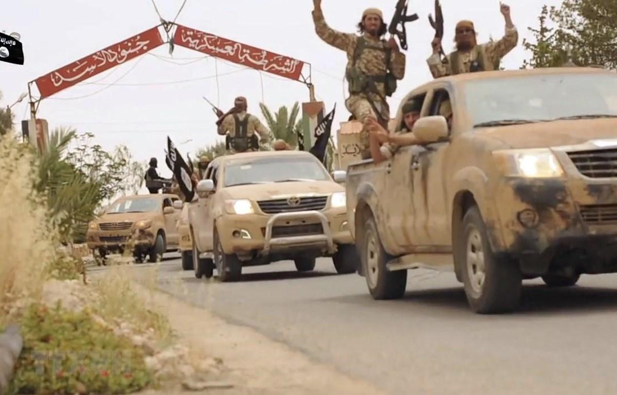 Các tay súng IS tại khu vực Welayat Homs, Syria, ngày 4/7/2015. (Ảnh: AFP/ TTXVN)