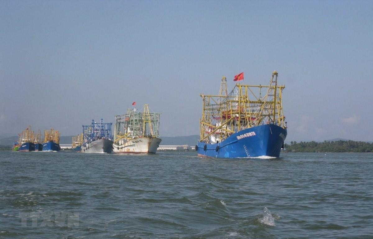 Ngư dân Quảng Nam vươn khơi bám biển. (Ảnh: Hữu Trung/TTXVN)
