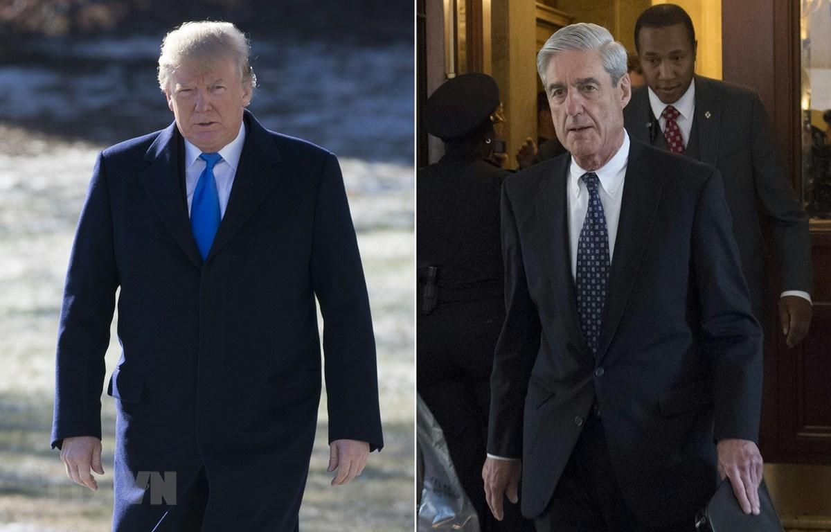 Tổng thống Mỹ Donald Trump (trái) và Công tố viên đặc biệt Robert Mueller. (Ảnh: AFP/TTXVN)