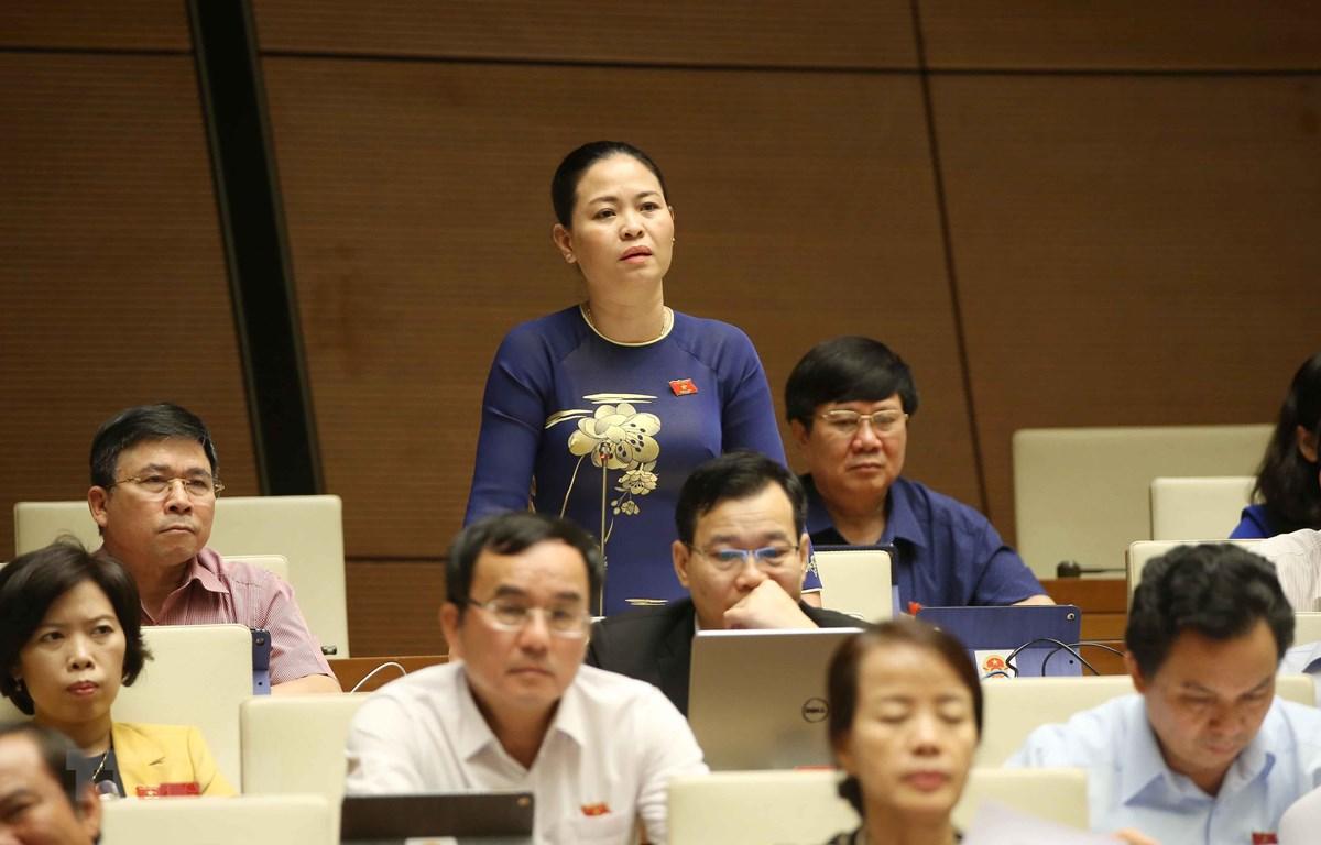 Đại biểu Quốc hội tỉnh Thái Bình Nguyễn Thị Thu Dung phát biểu ý kiến. (Ảnh: Doãn Tấn/TXVN)