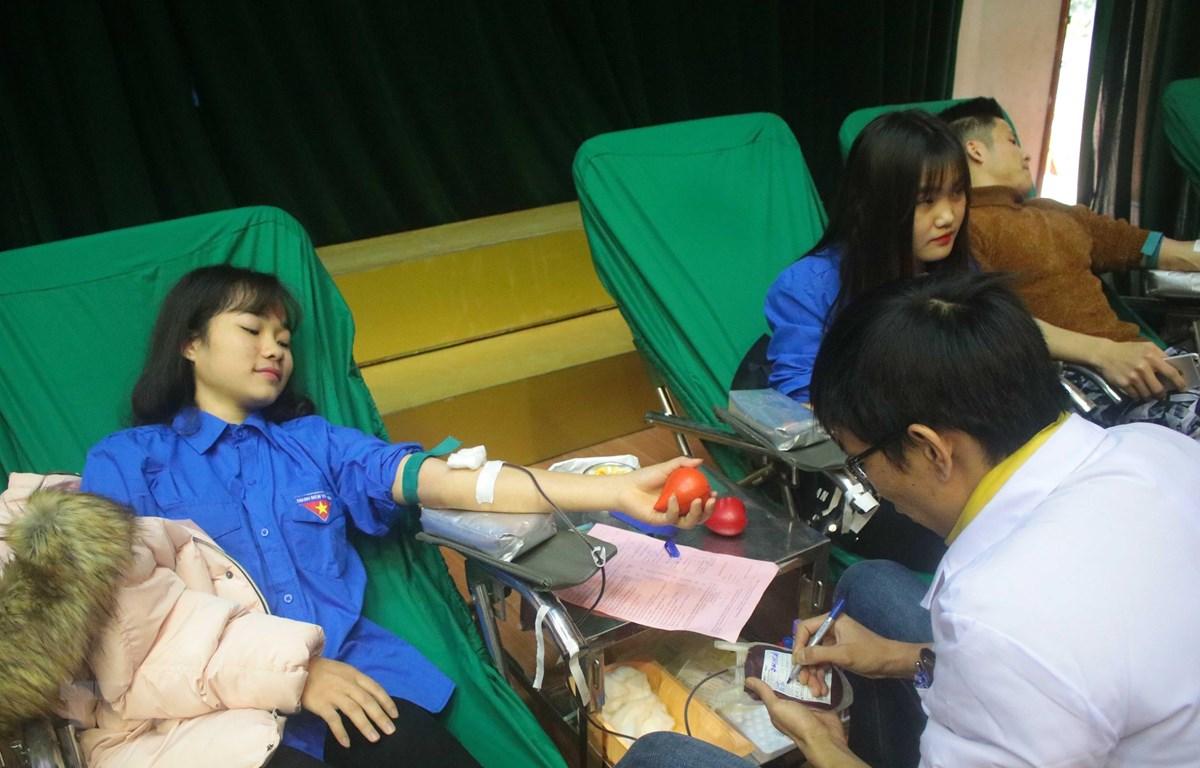 Đoàn viên thanh niên tham gia hiến máu tình nguyện tại Cao Bằng. (Ảnh: Chu Hiệu/TTXVN)
