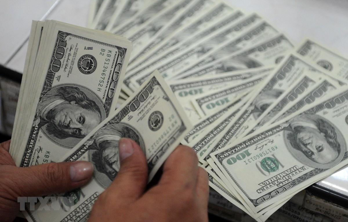 Đồng tiền mệnh giá 100USD. (Ảnh: AFP/TTXVN)