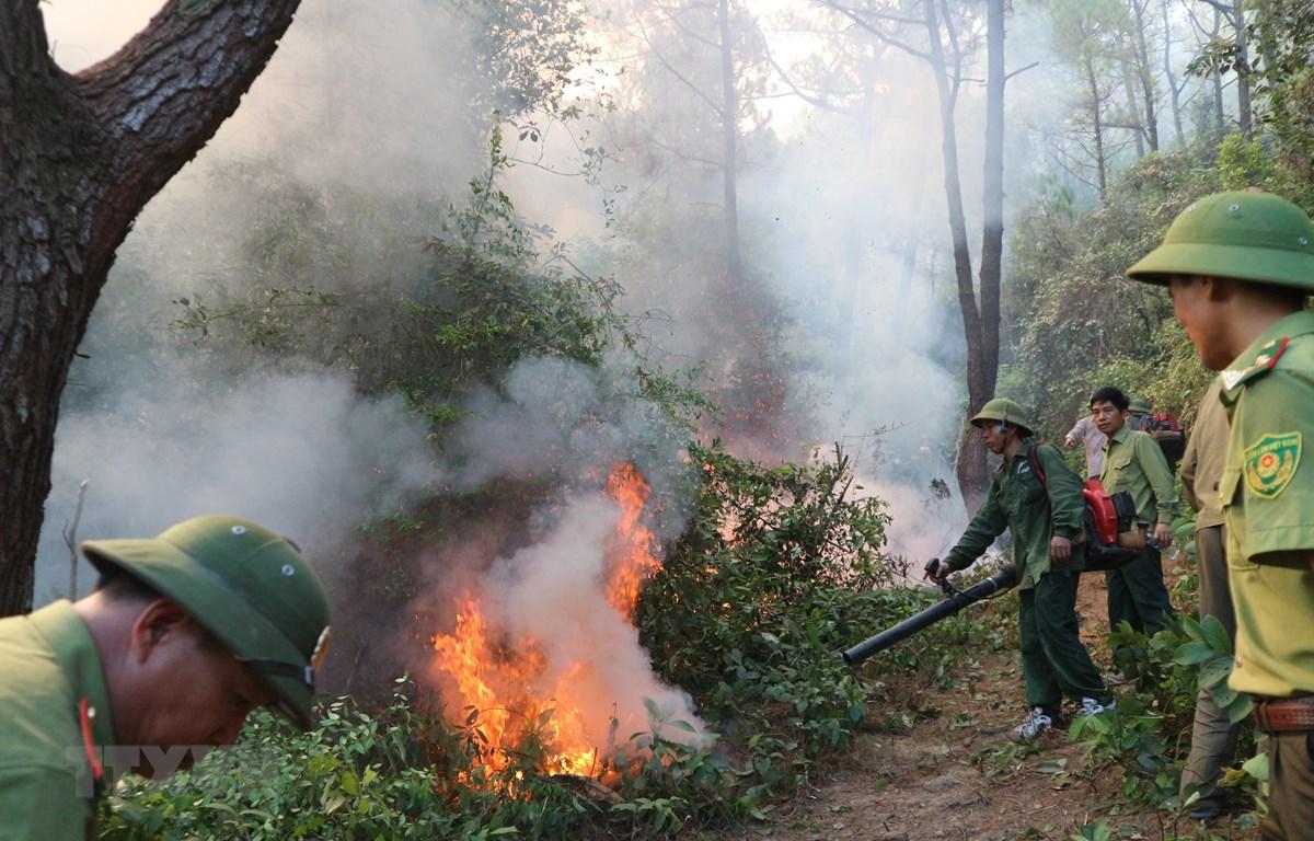 Lực lượng chức năng nỗ lực khống chế đám cháy rừng tại huyện Nghi Xuân ngày 29/6. (Ảnh: Hoàng Ngà/TTXVN)