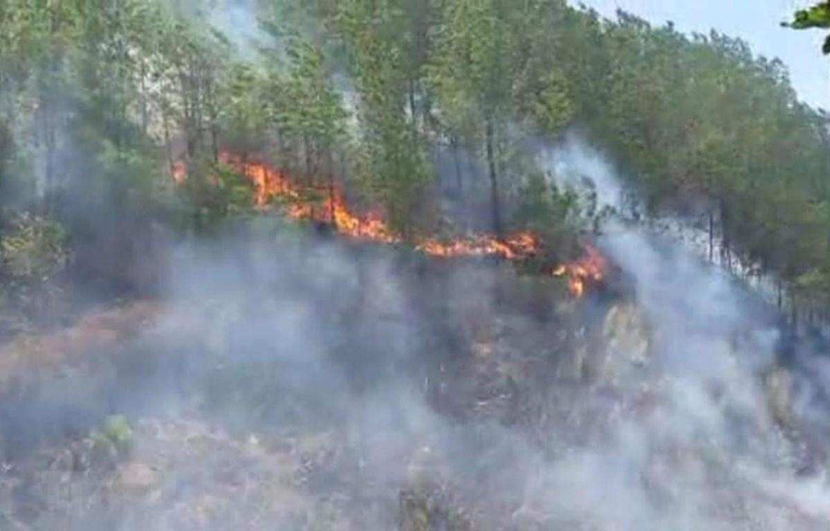 Thời gian qua đã xảy ra nhiều đám cháy rừng ở miền Trung do người dân bất cẩn dùng lửa. Trong ảnh: Cháy rừng ở huyện Hương Sơn, Hà Tĩnh. (Ảnh: TTXVN)