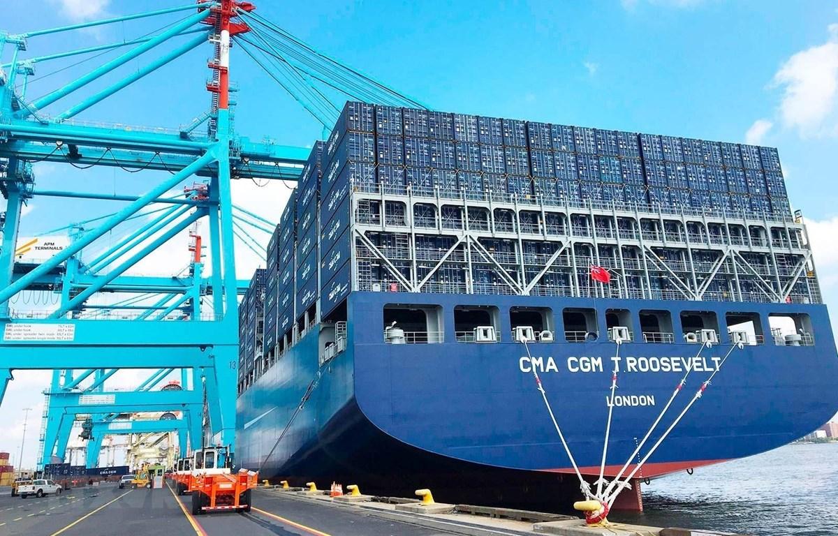 Tàu chở hàng hóa xuất nhập khẩu tại cảng Port Elizabeth của Nam Phi - một trong những cảng bận rộn nhất của Lục địa Đen. (Ảnh: Phi Hùng/TTXVN)
