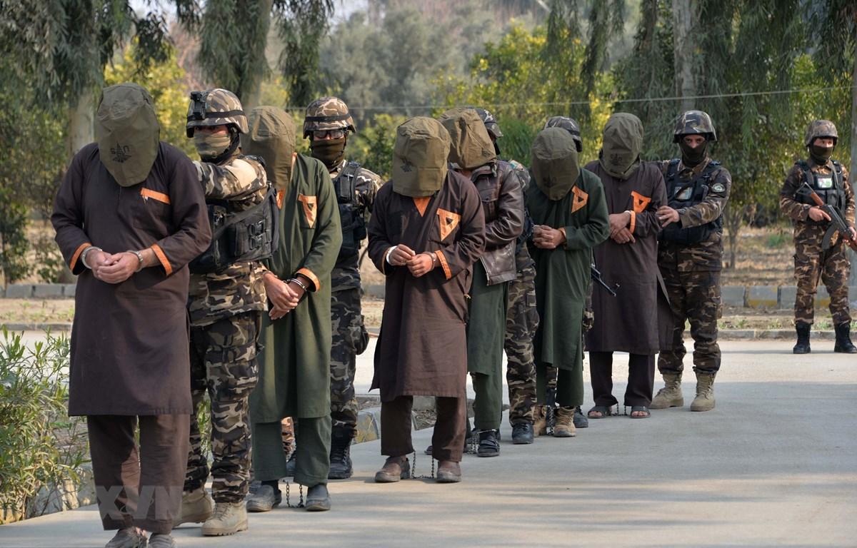 Các đối tượng tình nghi khủng bố là phiến quân Taliban bị bắt giữ trong chiến dịch ở Jalalabad, Afghanistan. (Ảnh: AFP/TTXVN)