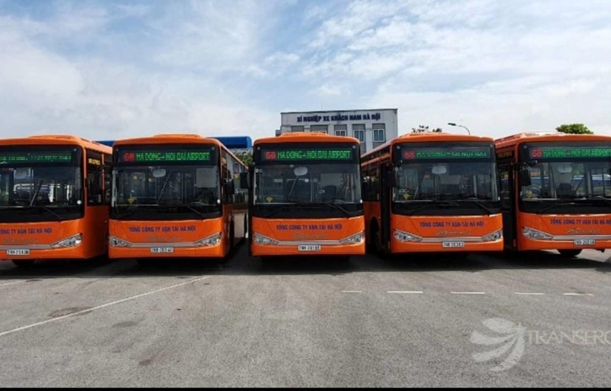 Dàn xe buýt chất lượng cao vận hành trên tuyến số 68 Hà Đông - Nội Bài. (Ảnh: TTXVN)
