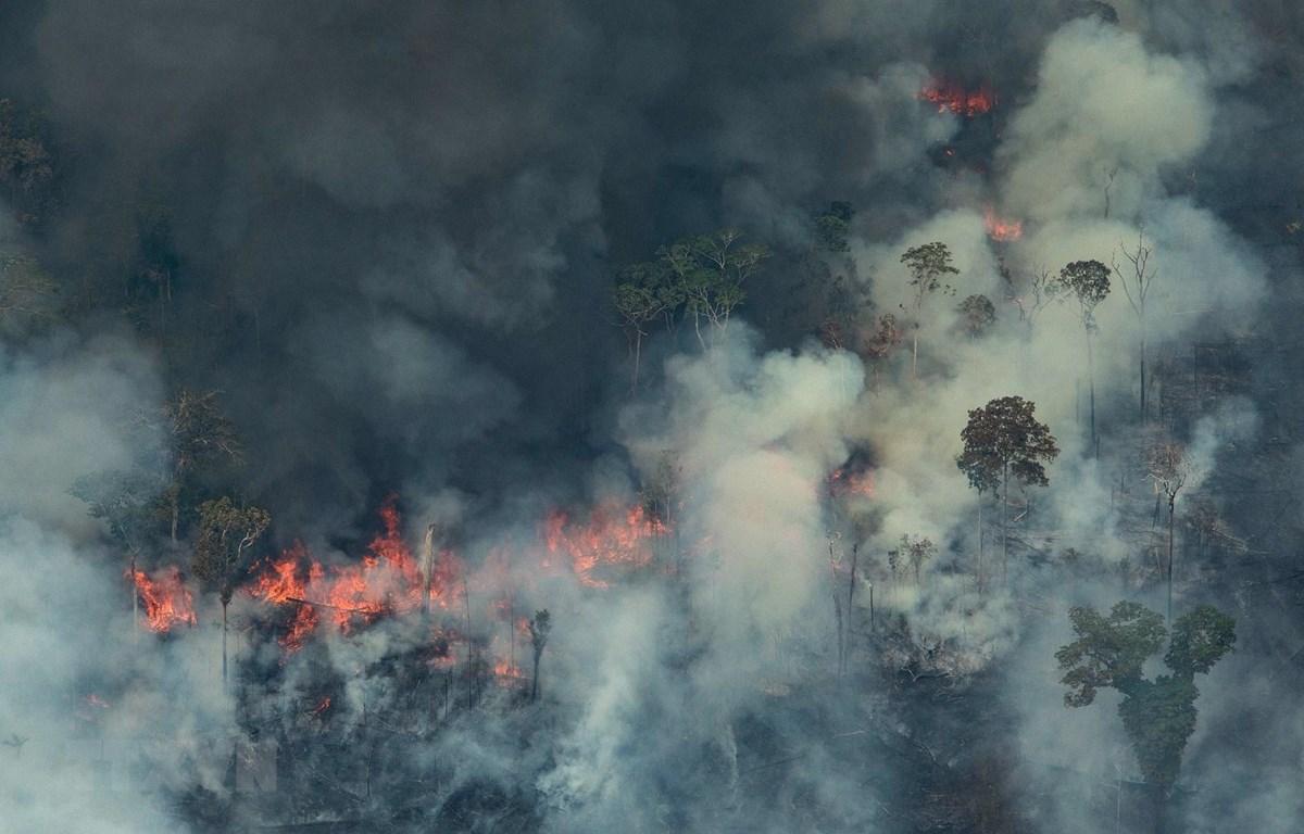 Khói lửa bốc lên từ đám cháy tại rừng Amazon ở Porto Velho, bang Rondonia, miền Tây Bắc Brazil, ngày 24/8/2019. (Ảnh: AFP/TTXVN)