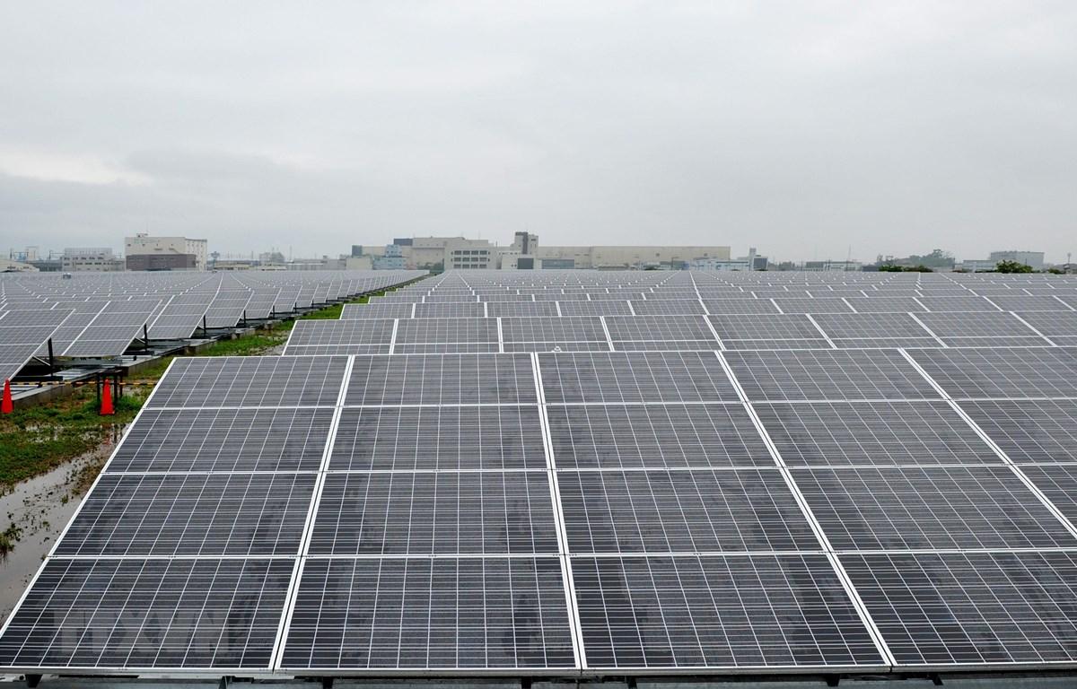 Các tấm pin năng lượng mặt trời tại nhà máy điện ở Kyoto, Nhật Bản. (Ảnh: AFP/TTXVN)