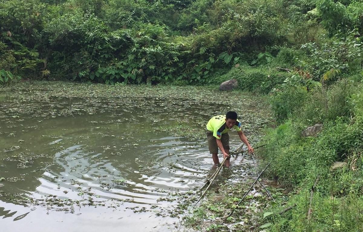 Nhiều hộ dân ở những vùng sâu, vùng xa bị thiếu nước sạch sinh hoạt. (Ảnh: Thanh Hải/TTXVN)