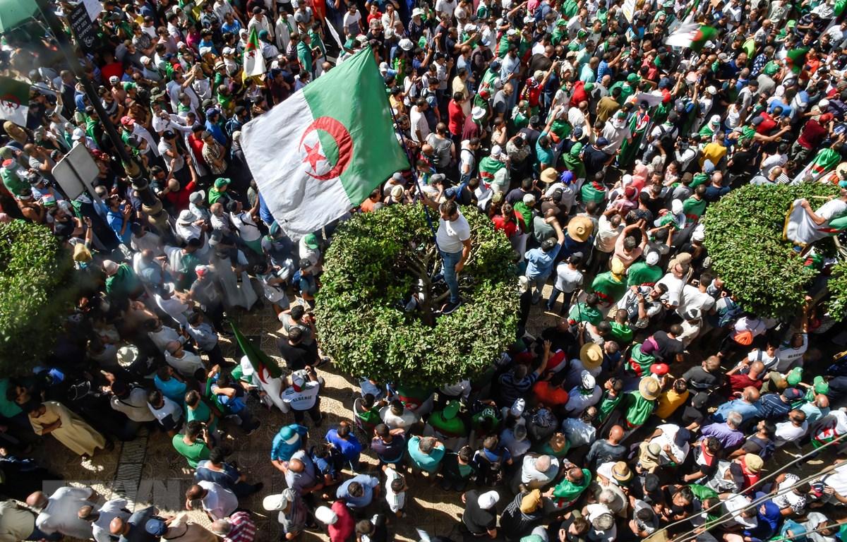 Biểu tình tại thủ đô Algiers, Algeria, phản đối chính phủ. (Ảnh: AFP/TTXVN)