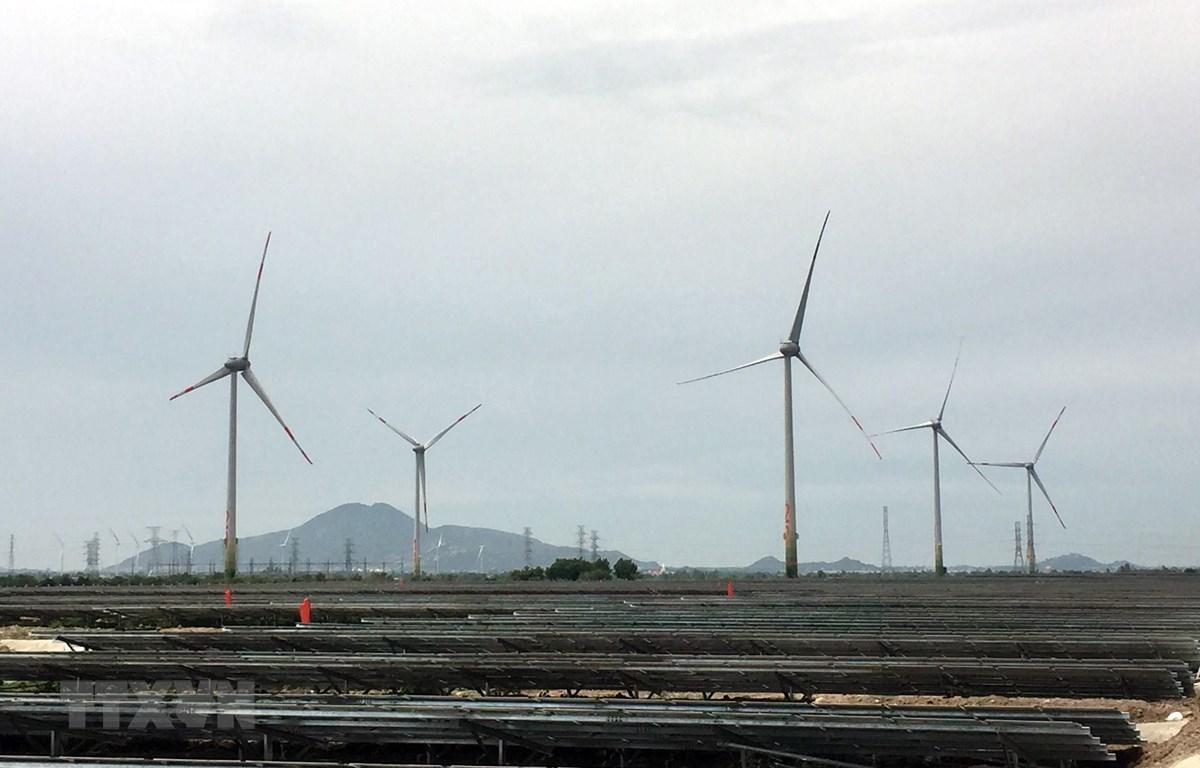 Nhiều dự án điện gió và điện mặt trời tại Ninh Thuận phải giảm công suất phát do quá tải đường truyền. (Ảnh: Công Thử/TTXVN)