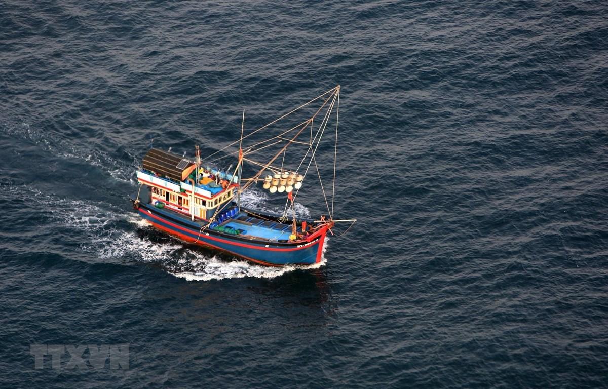 Tàu đánh bắt hải sản trên vùng biển Phú Quốc, tỉnh Kiên Giang. (Ảnh: Ngọc Hà/TTXVN)