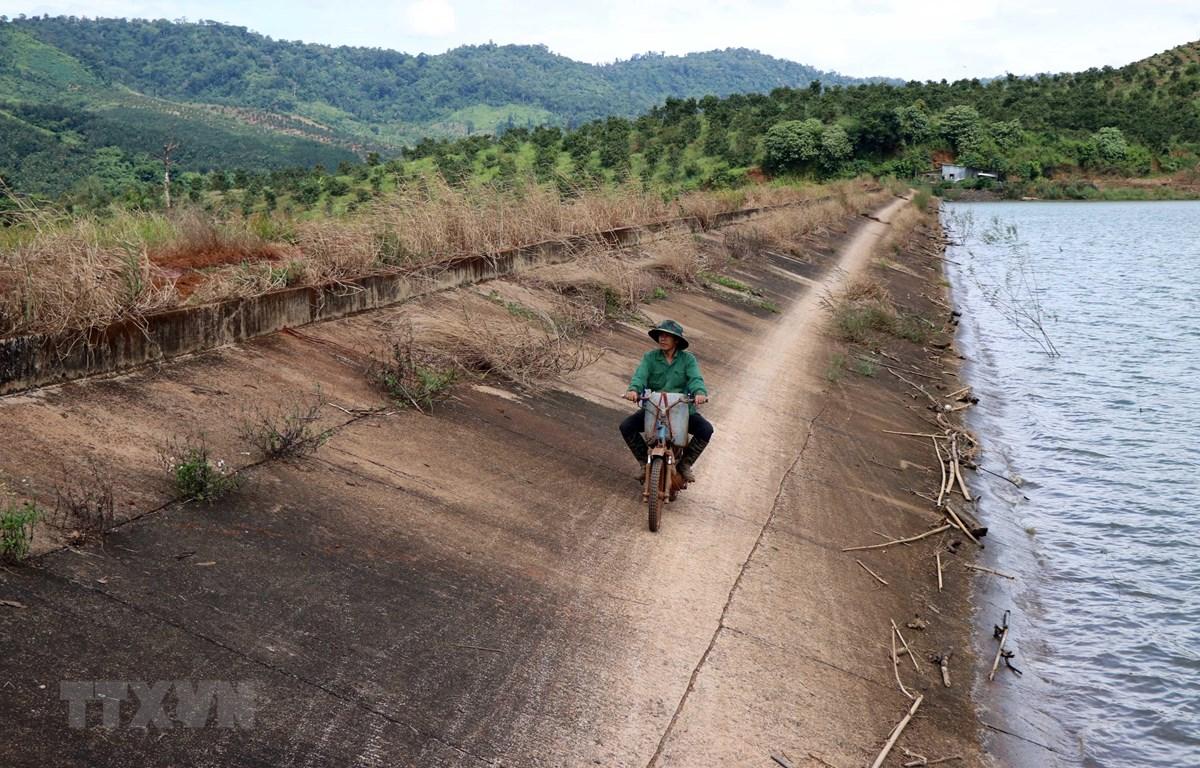 Người dân di chuyển trên mái đập vì mặt đập lầy lội, đi lại khó khăn. (Ảnh: Ngọc Minh/TTXVN)