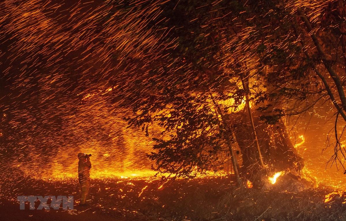 Lửa cháy dữ dội gần Geyserville, bang California (Mỹ) ngày 24/10/2019. (Ảnh: AFP/TTXVN)