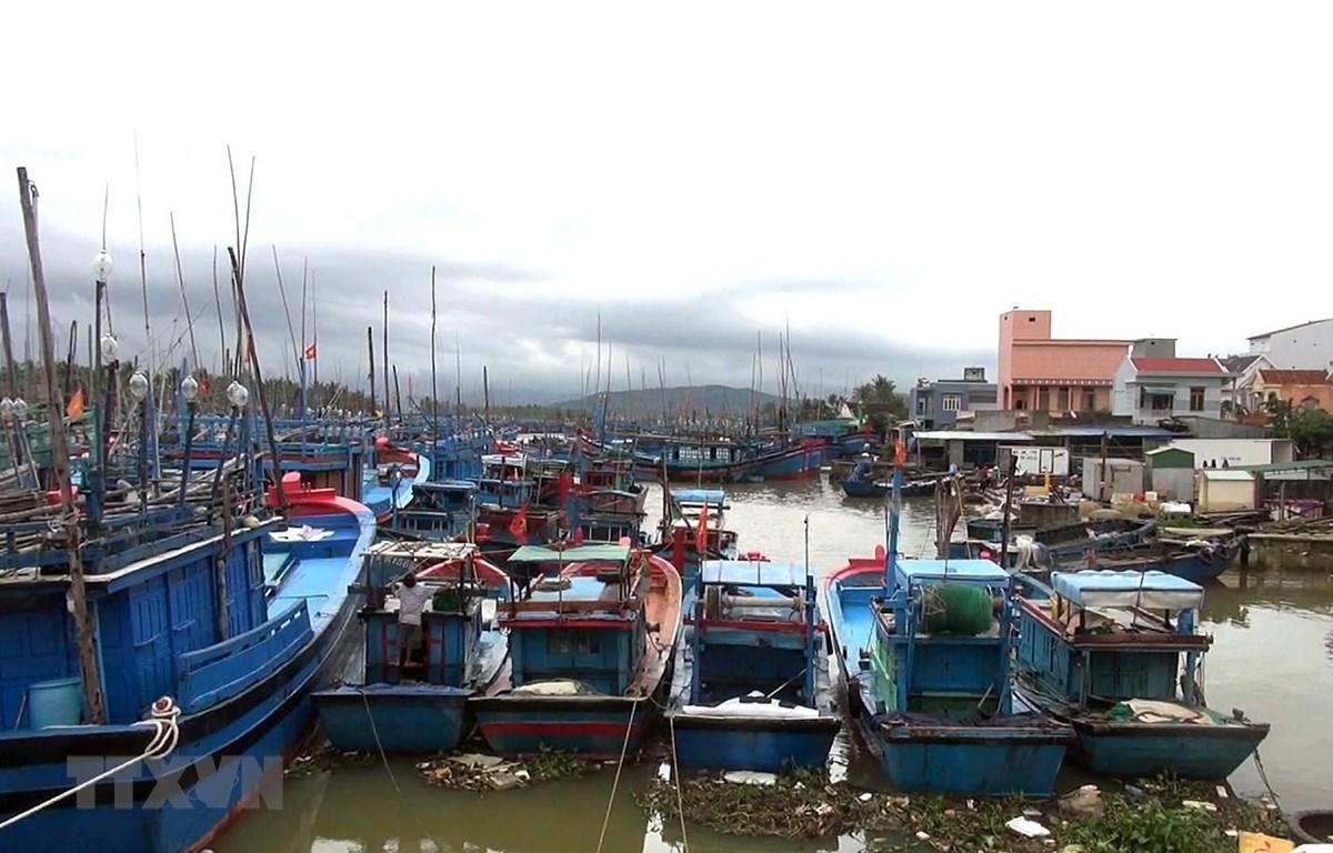 Đến chiều 29/10/2019, Bình Định đã kêu gọi được hơn 5.000 tàu thuyền vào bờ trú ẩn an toàn. (Ảnh: Nguyên Linh/ TTXVN)