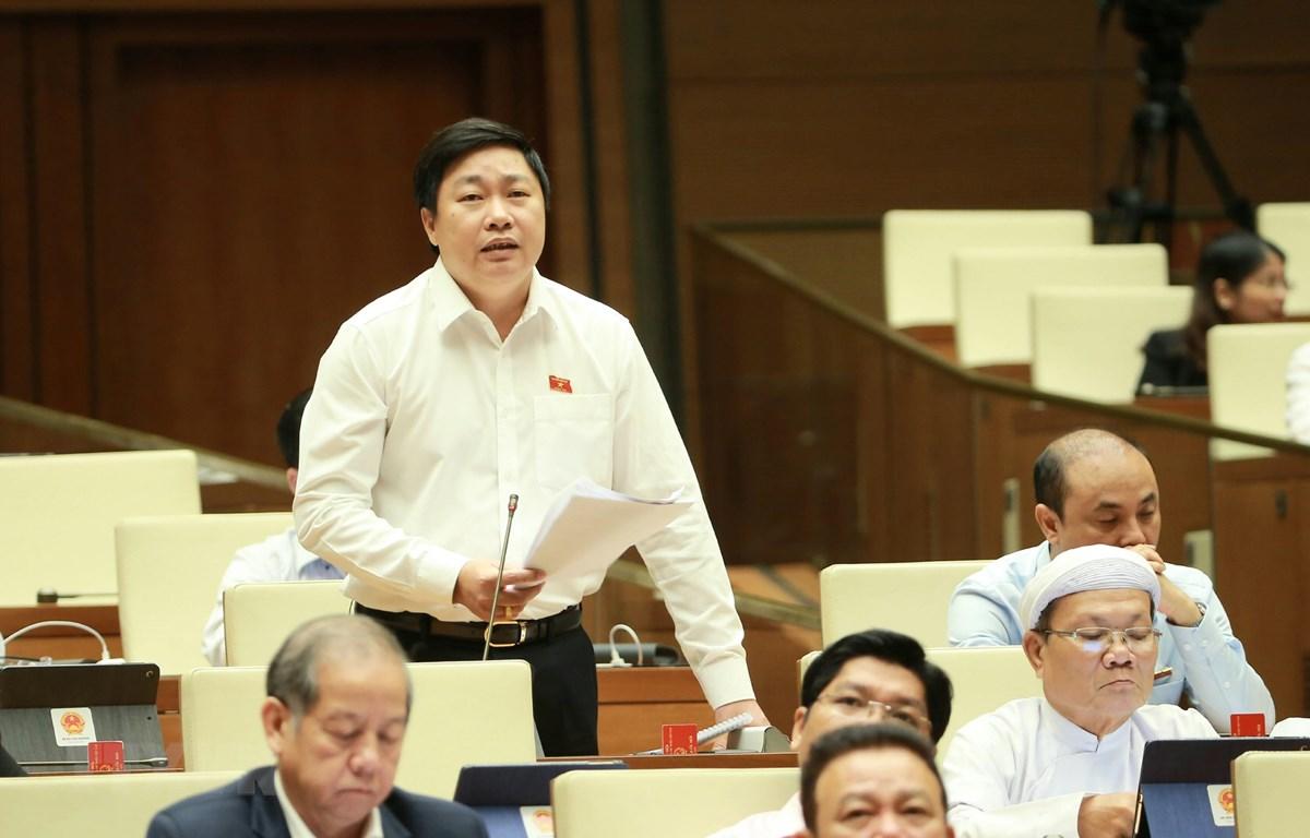 Đại biểu Quốc hội tỉnh Ninh Bình Mai Khanh phát biểu ý kiến. (Ảnh: Doãn Tấn/TTXVN)