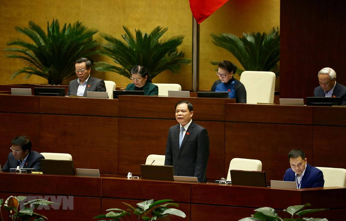 Bộ trưởng Bộ Nông nghiệp & Phát triển nông thôn Nguyễn Xuân Cường trả lời câu hỏi chất vấn của đại biểu Quốc hội. (Ảnh: Dương Giang/TTXVN)