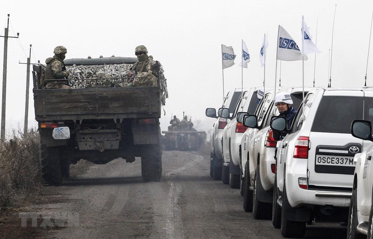 Các lực lượng Ukraine rút quân ở khu vực gần làng Bogdanivka thuộc vùng Donetsk ngày 9/11/2019. (Ảnh: AFP/TTXVN)