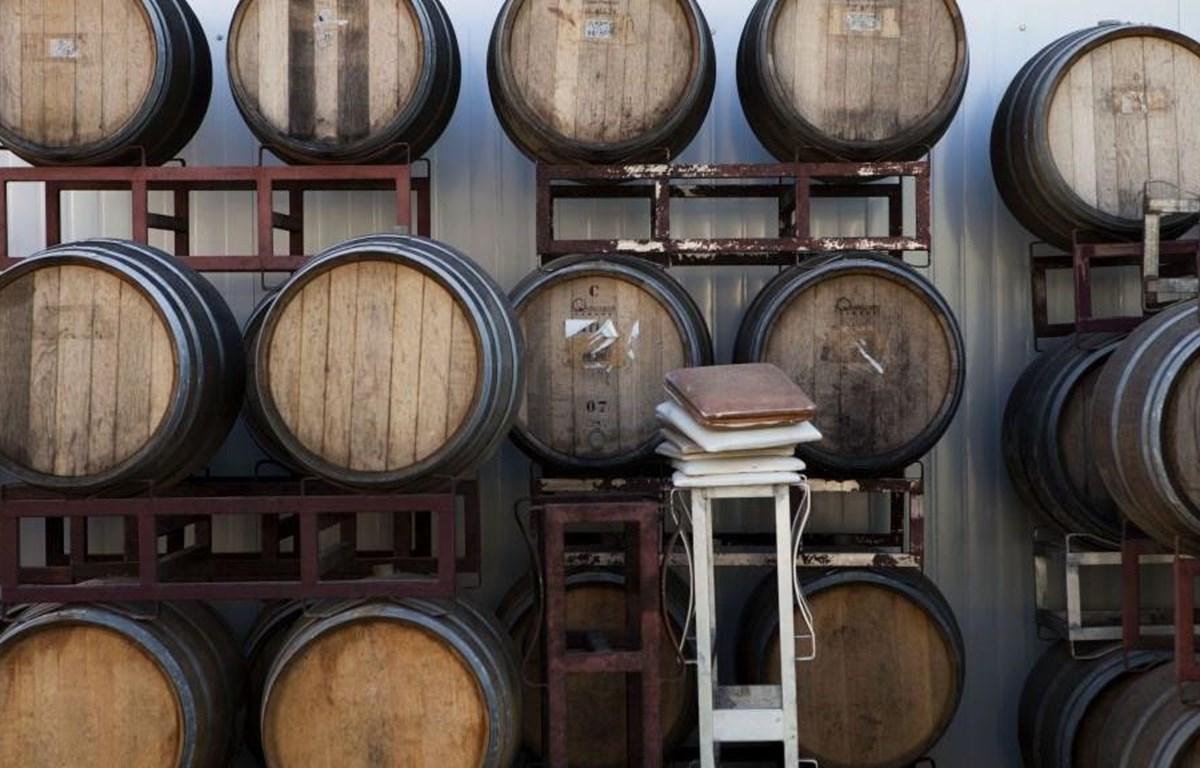 Những thùng rượu vang tại một nhà máy rượu của Israel ở khu định cư Psagot ở Bờ Tây. (Nguồn: AP)