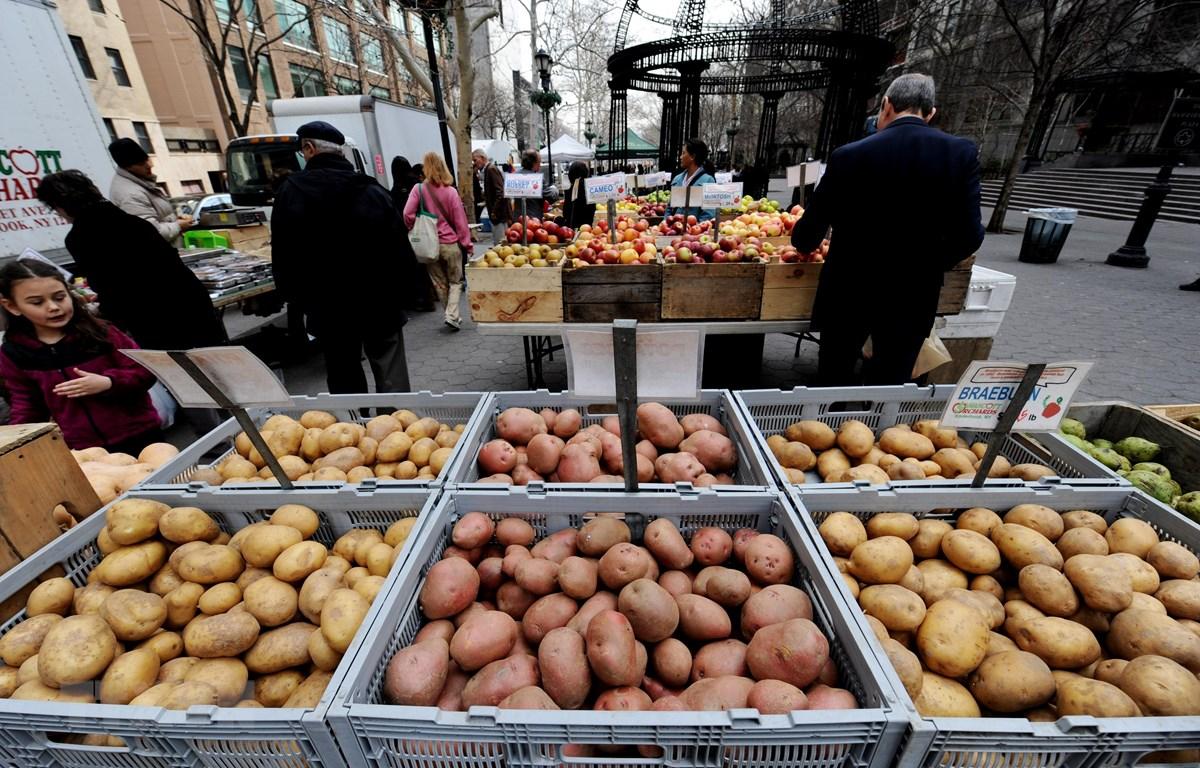 Rau củ quả được bán tại một khu chợ ở New York, Mỹ. (Ảnh: AFP/TTXVN)