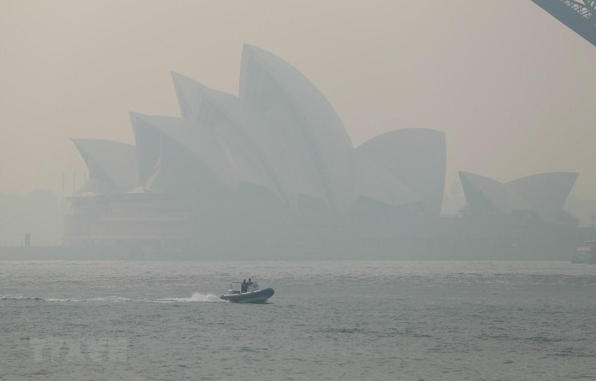 Khói mù từ các đám cháy rừng bao phủ dày đặc tại Sydney, Australia, ngày 21/11/2019. (Ảnh: THX/TTXVN)