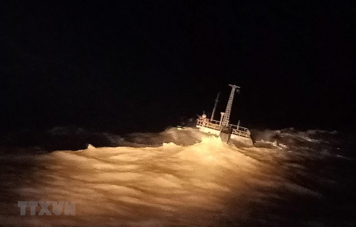 Tàu Đại Hải Phát 17 vào tối 20/11. (Ảnh: Huỳnh Ngọc Sơn - TTXVN)