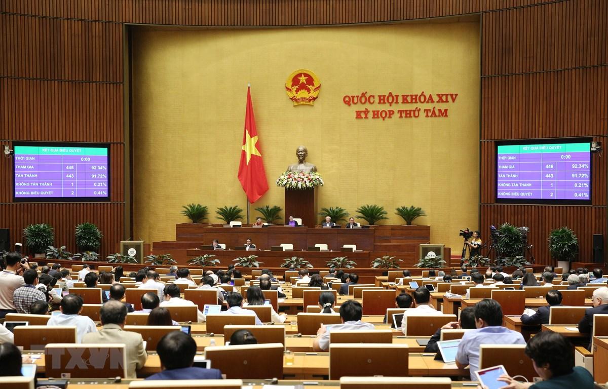 Chiều 22/11/2019, các Đại biểu Quốc hội biểu quyết thông qua Luật Dân quân tự vệ (sửa đổi) với 443/446 phiếu tán thành, chiếm 91,72%. (Ảnh: Dương Giang/TTXVN)