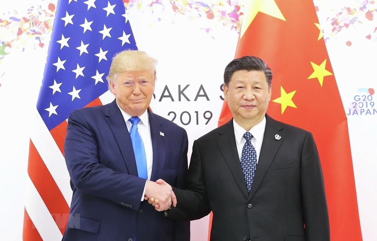Tổng thống Mỹ Donald Trump (trái) trong cuộc gặp Chủ tịch Trung Quốc Tập Cận Bình tại Osaka, Nhật Bản ngày 29/6/2019. (Ảnh: THX/TTXVN)