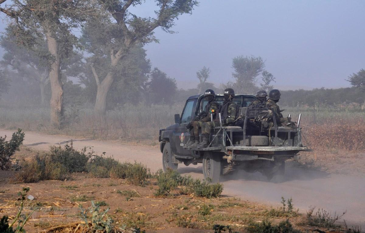 Binh sỹ Cameroon tuần tra tại khu vực ngoại ô Mosogo, Cameroon, ngày 21/3/2019. (Ảnh: AFP/TTXVN)