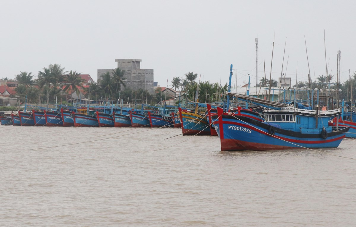 Tàu thuyền của ngư dân được đưa vào neo đậu tránh bão tại cảng cá Đông Tác, thành phố Tuy Hòa. (Ảnh: Phạm Cường/TTXVN)
