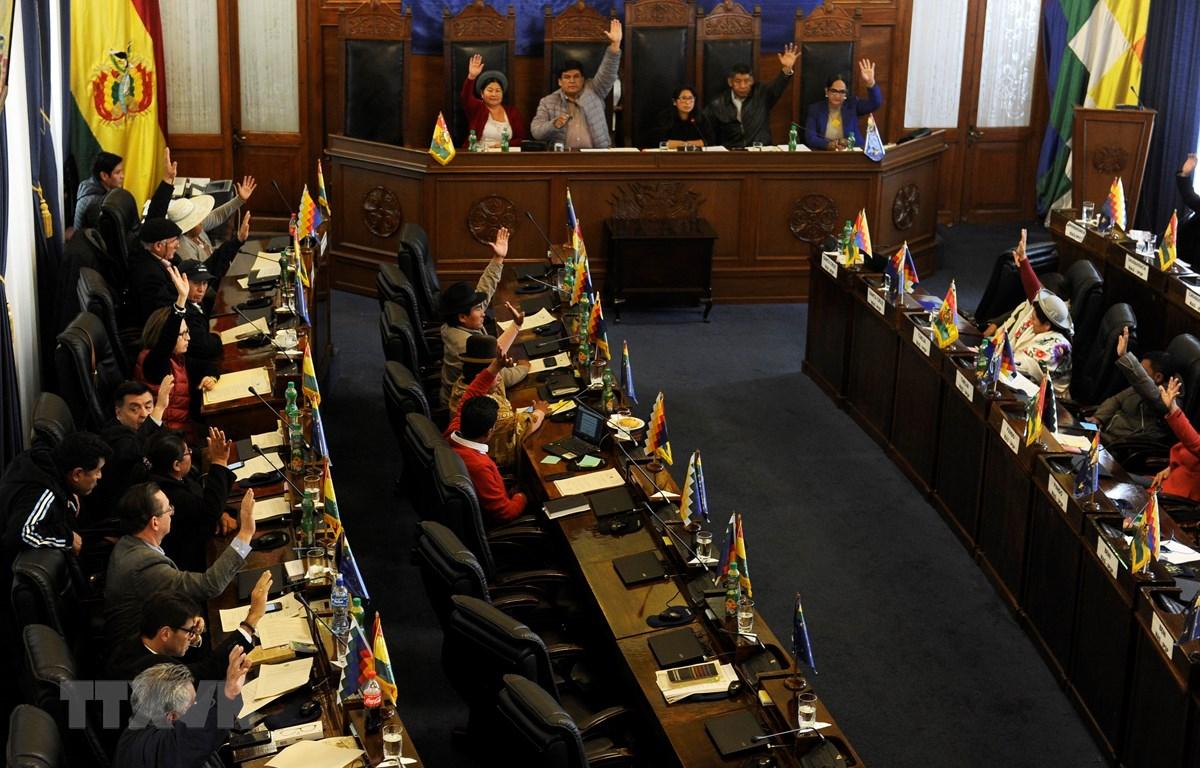 Các nghị sỹ biểu quyết thông qua dự luật tổ chức bầu cử tại phiên họp Quốc hội Bolivia ở La Paz ngày 23/11/2019. (Ảnh: AFP/TTXVN)