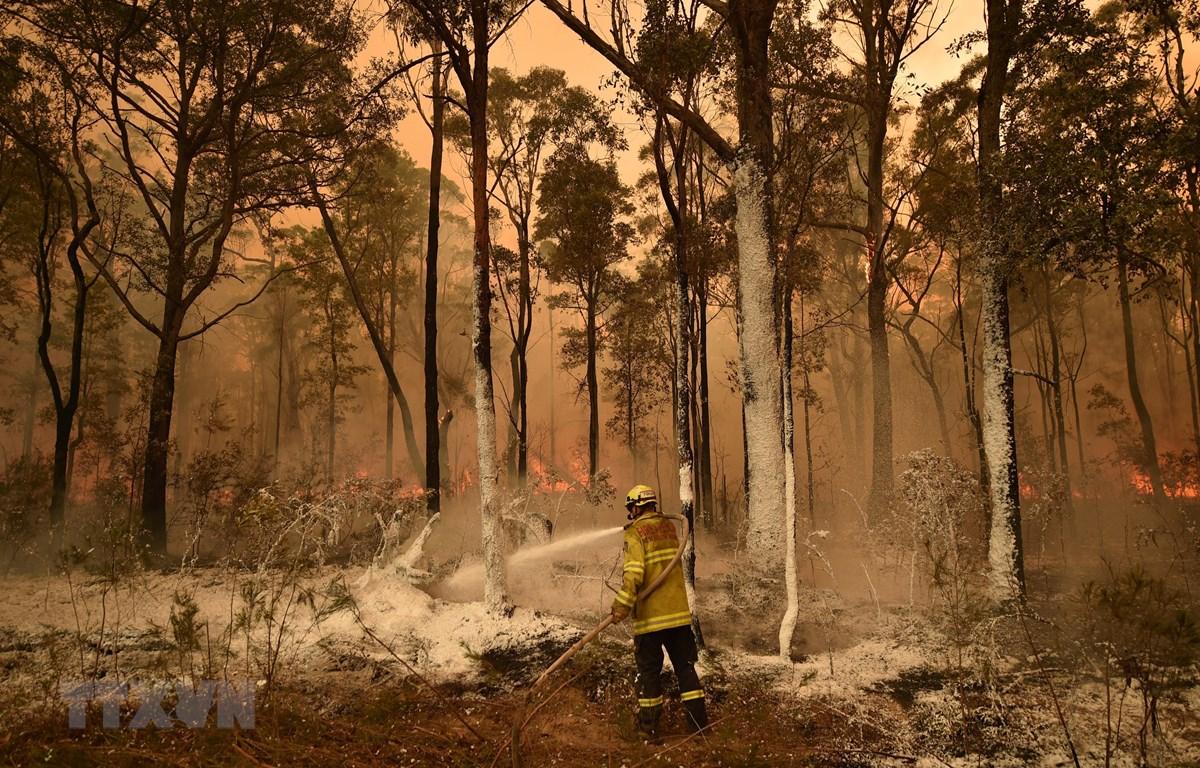 Lực lượng cứu hỏa nỗ lực khống chế các đám cháy rừng tại New South Wales, Australia. (Ảnh: AFP/TTXVN)