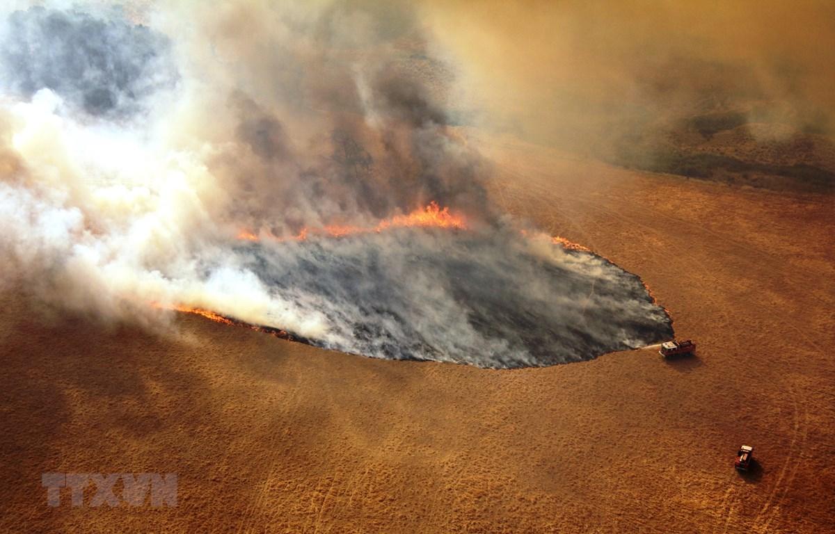 Khói lửa bốc lên từ đám cháy rừng tại Victoria, Australia. (Ảnh: THX/TTXVN)