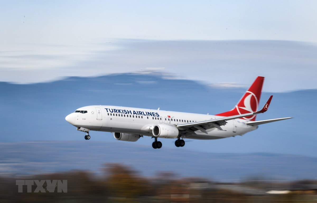 Máy bay của hãng hàng không Turkish Airlines. (Ảnh: AFP/TTXVN)
