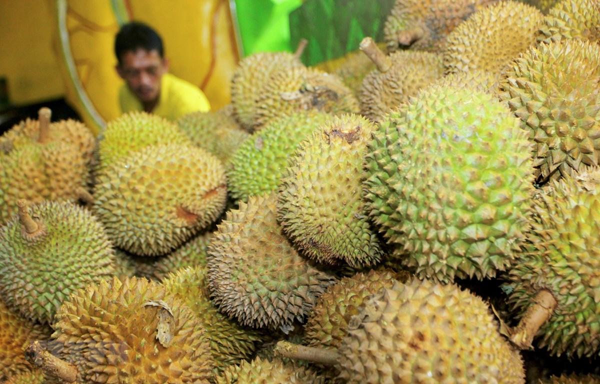 Quả sầu riêng bày bán tại một chợ ở Indonesia. (Ảnh: AFP/TTXVN)