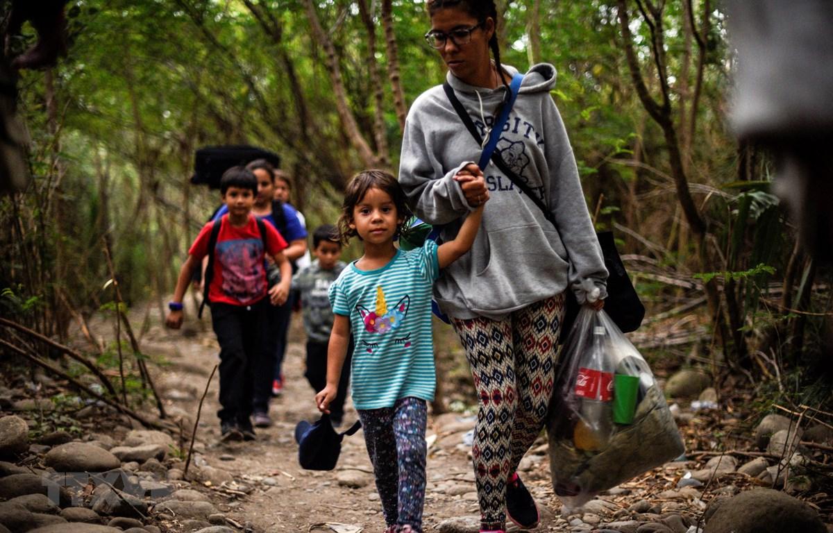 FAO cảnh báo nguy cơ 85 triệu trẻ em tại Mỹ Latinh thiếu dinh dưỡng do dịch COVID-19. (Nguồn: AFP/TTXVN)