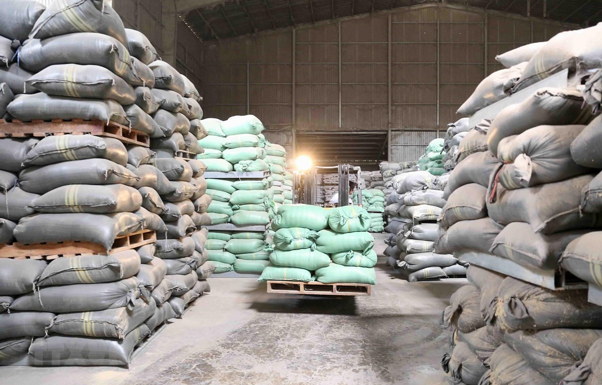 Chậm nhất đến 8/4/2020, các Cục Dự trữ Nhà nước khu vực phải ký xong hợp đồng mua gạo dự trữ. (Ảnh: Vũ Sinh/TTXVN)