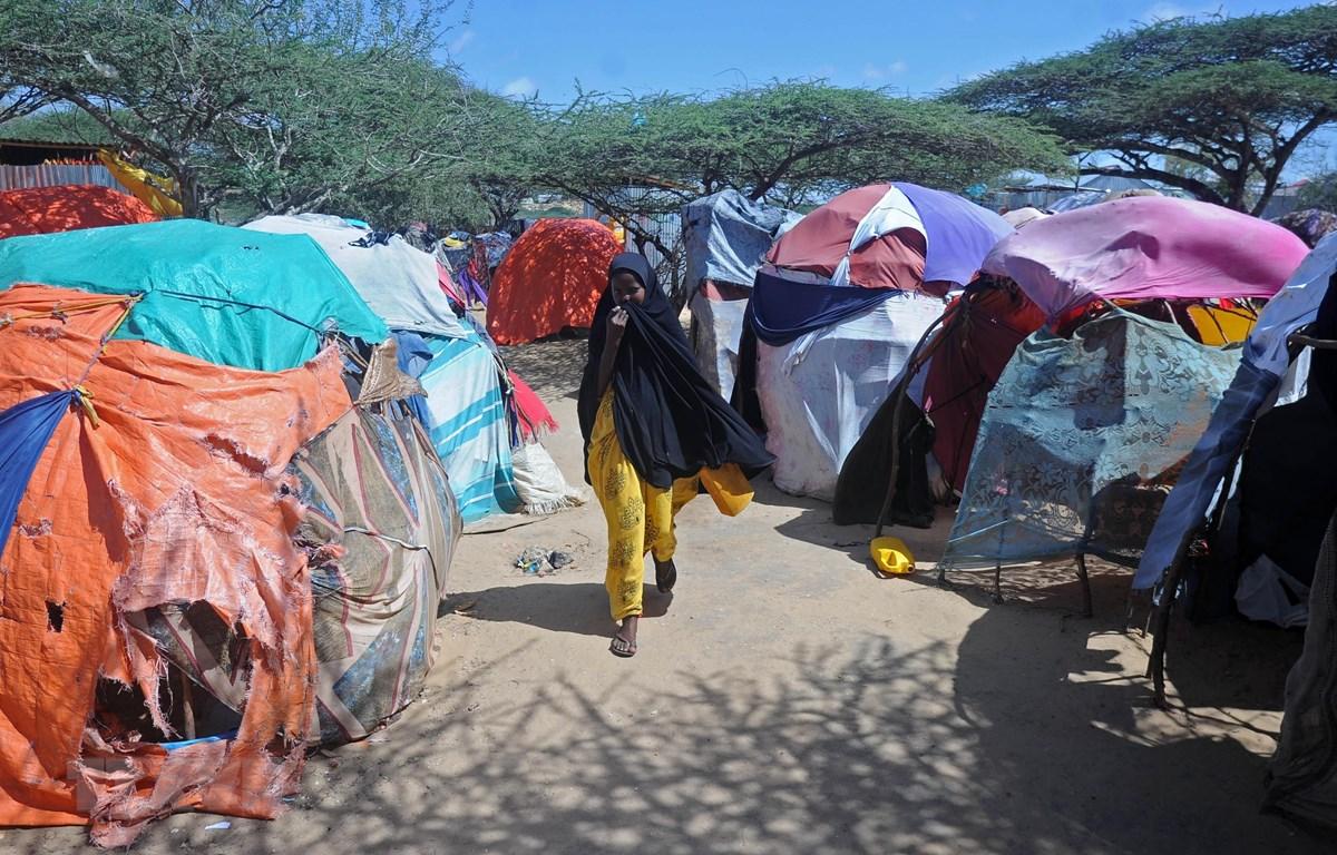 Khu trại tạm dành cho những người phải rời bỏ nhà cửa lánh nạn do hạn hán kéo dài tại ngoại ô Mogadishu, Somalia. (Ảnh: AFP/TTXVN)
