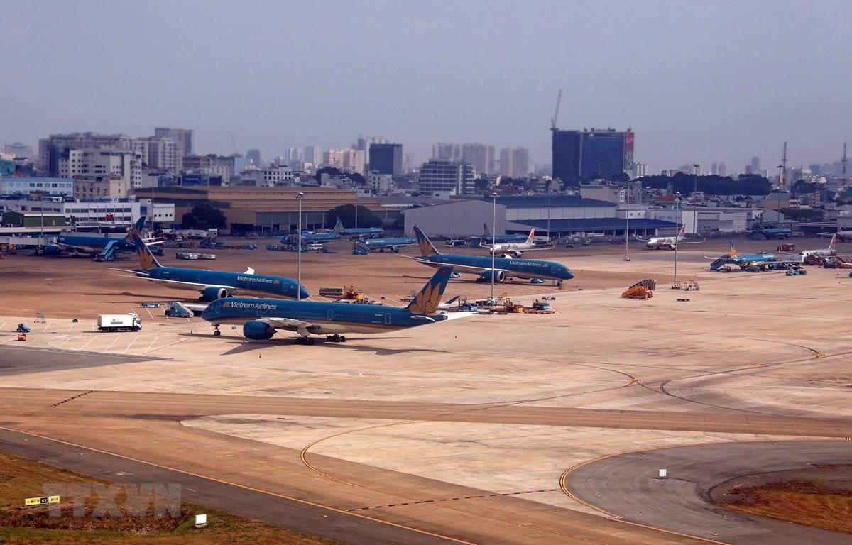 Máy bay của các hãng hàng không đậu tại sân bay Tân Sơn Nhất. (Ảnh: Ngọc Hà/TTXVN)