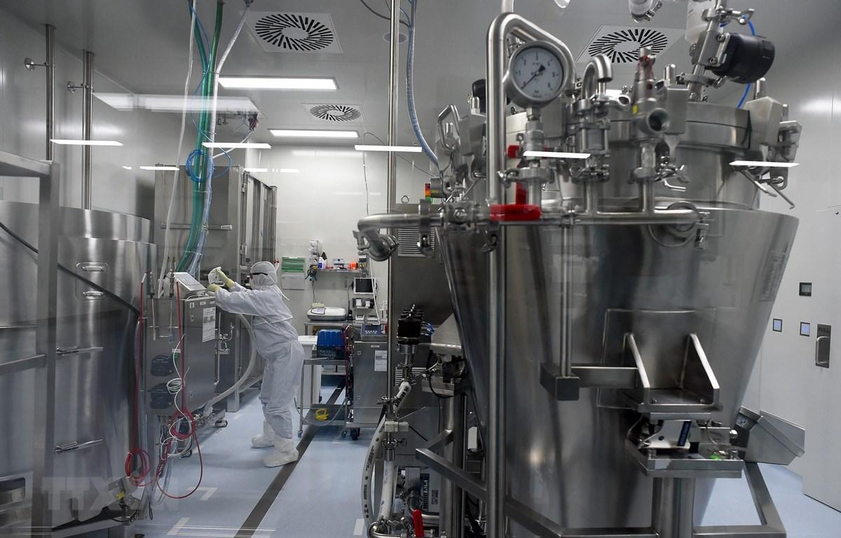 Nghiên cứu vắcxin phòng COVID-19 tại một công ty ở Strelna, Nga, ngày 20/5/2020. (Ảnh: AFP/TTXVN)