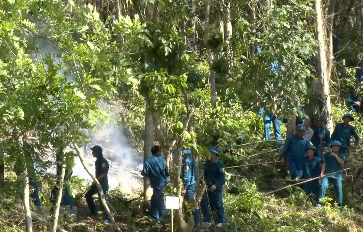 Diễn tập phòng chống cháy rừng tại huyện miền núi Cẩm Thủy, Thanh Hóa. (Ảnh: Nguyễn Nam/TTXVN)