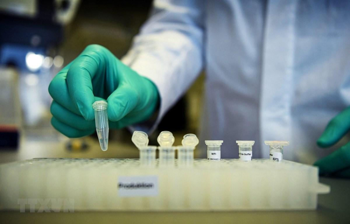 Nghiên cứu vaccine phòng dịch COVID-19 tại phòng thí nghiệm ở Tuebingen, Đức, ngày 12/3/2020. (Ảnh: Reuters/TTXVN)