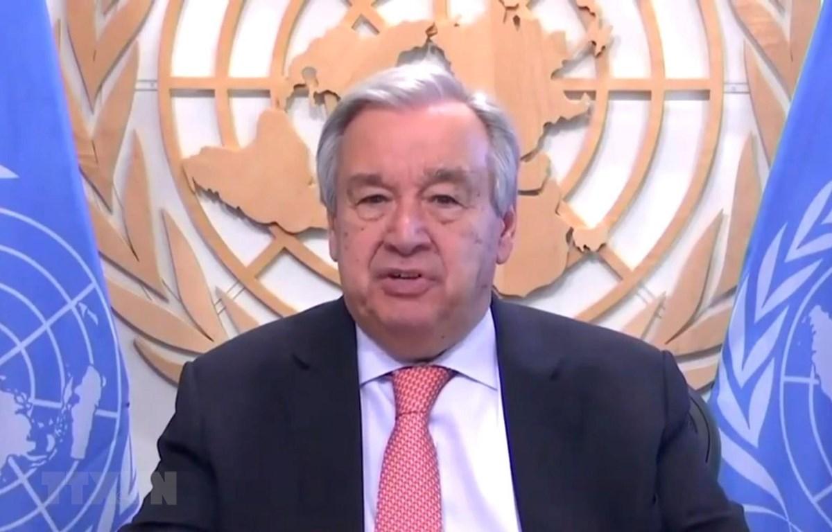 Tổng Thư ký LHQ Antonio Guterres. (Ảnh: THX/TTXVN)