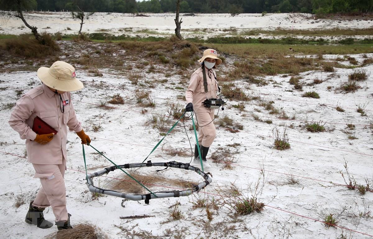 Thành viên đội MAT 19 rà tìm các vật liệu nổ bằng máy chuyên dụng tại vùng cát huyện Hải Lăng, Quảng Trị. (Ảnh: Hồ Cầu/TTXVN)
