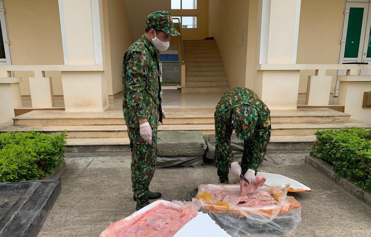 Lực lượng biên phòng Chi Ma (Lạng Sơn) kiểm tra số nầm lợn nhập lậu bị thu giữ. (Ảnh: TTXVN)