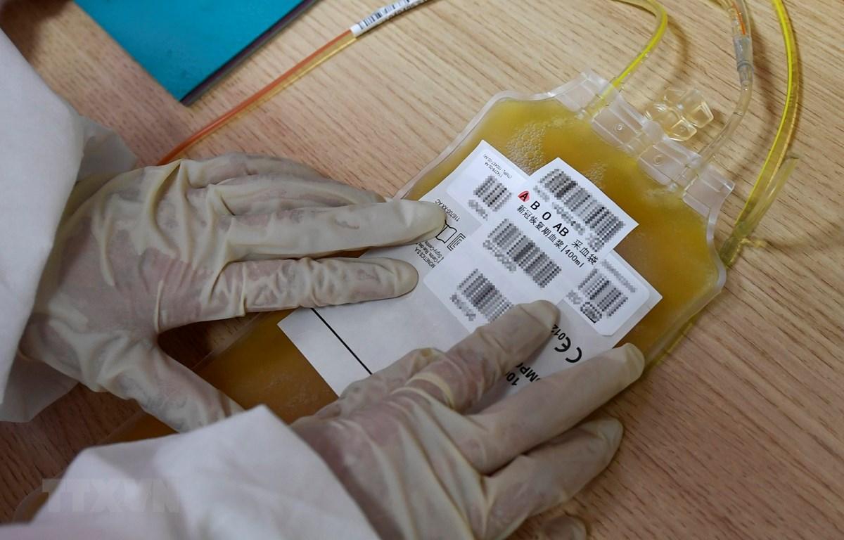 Điều trị COVID-19 bằng huyết tương của bệnh nhân mắc COVID-19 được áp dụng cho các ca bệnh nặng. (Ảnh: THX/TTXVN)