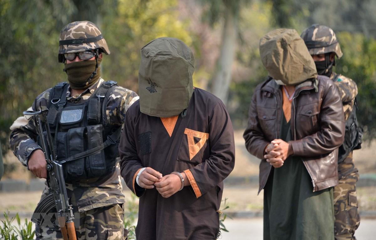 Binh sỹ Afghanistan bắt giữ các tay súng Taliban tại Jalalabad. (Ảnh: AFP/TTXVN)